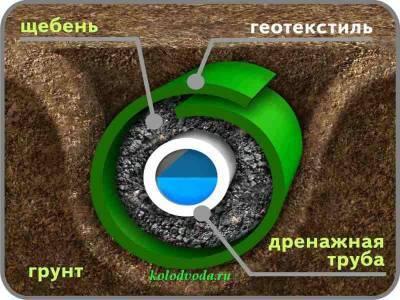 b2ap3_thumbnail_296564_800x670.jpg