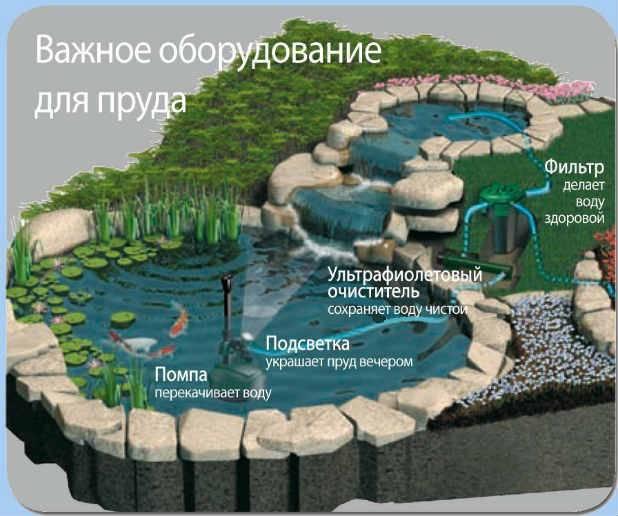 Строительство пруда на даче своими руками