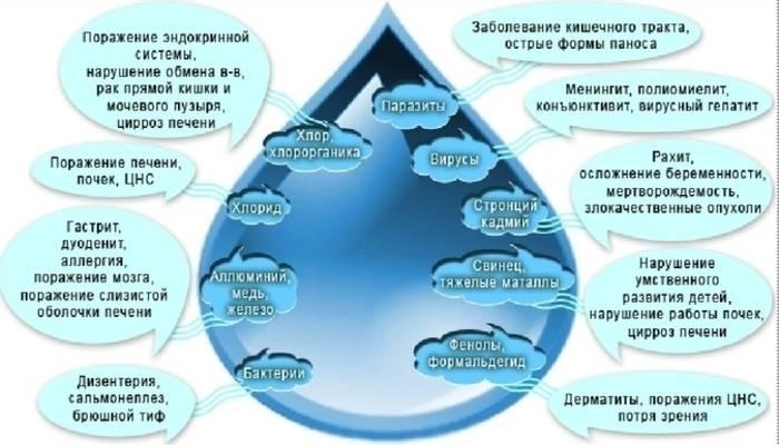 Анализ воды на бактерии