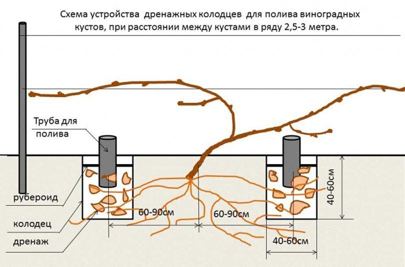 Автоматическая система полива на даче